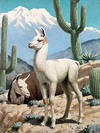 Wild Goats or Llamas with Cacti and Mountain top
