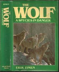 The Wolf, A Species in Danger