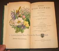 British Wild Flowers Illustrated by John E. Sowerby.  Described, with an introduction and key to the natural order by C. Pierpoint Johnson