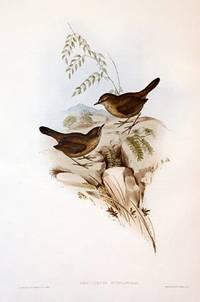 THE BIRDS OF AUSTRALIA Volume III. [Robins, Wrens, Finches]