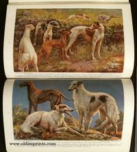 The National Geographic Magazine.  1937 - 10