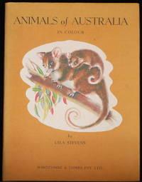 Animals Of Australia In Colour