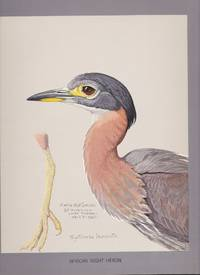 Abyssinian Birds and Mammals painted from life by Louis Agassiz Fuertes