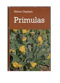 Primulas