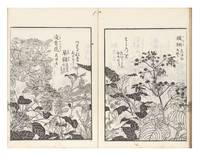 Haikai na no shiori [Haikai Guide to Words, or, Haikai Almanac Infused with Nature]