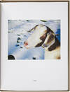 View Image 3 of 5 for Pet Pictures (Signed Limited Edition) Inventory #24967