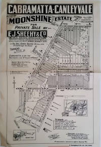 image of Cabramatta-Canley Vale Moonshine Estate for Private Sale by E.J. Sheehy & Co. with sold lots cross hatched out