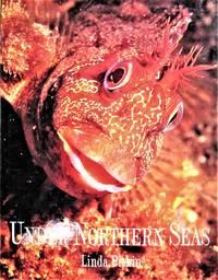 image of Under Northern Seas