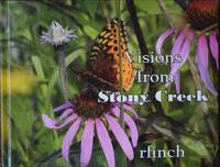 Visions from Stony Creek