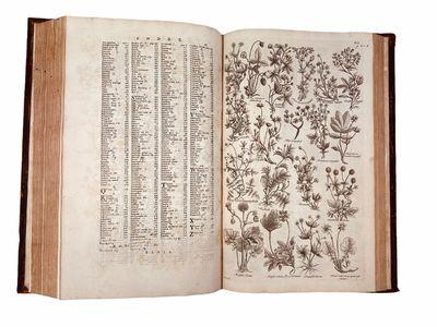 The British herbal. London, 1756