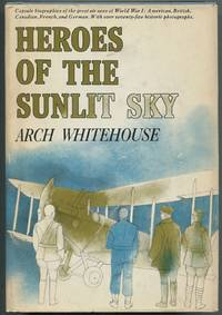 image of Heroes of the Sunlit Sky