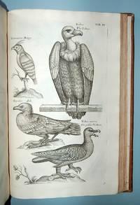 Ornithologiae libri tres: in quibus aves omnes hactenus cognitae in methodum naturis suis convenientem redactae accurate describuntu..