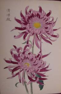 [One Hundred Chrysanthemums] by  Keika HASEGAWA - 1893 - from D & E Lake Ltd. (ABAC, ILAB) (SKU: elala1629)