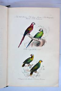 The Book of Birds: edited and abridged from the text of Buffon by  Benjamin Clarke [translator] M Achille Comte - 1st Edition - 1841 - from E C Books and Biblio.com