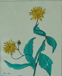 image of Clos Joli Etudes de Fleurs et Fruits