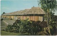 Lei Stands near the Honolulu Airport, Hawaii, unused Postcard