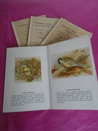 COMMON BIRDS OF THE GARDEN; OF THE WOODLANDS; OF THE WATERSIDE, OF THE FIELDS & COMMONS [set of Four Folders Reproduced from The Birds of the British Isles By T. A. Coward in the Wayside and Woodland Series]