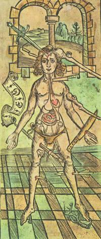 Dis ist das Buch der Cirurgia; Hantwirckung der Wund Artzny