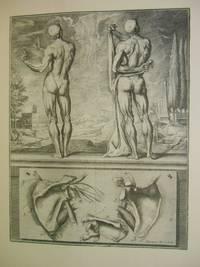 El Atlas Anatomico de Crisostomo Martinez
