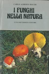 I funghi nella natura.