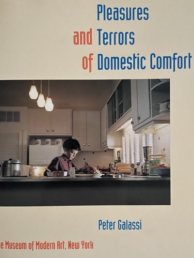 Pleasures And Terrors Of Domestic...