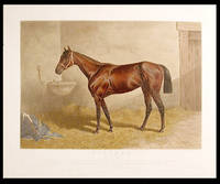 Firenze Queen of the Turf 1890 by Glenelg dam Florida... Owned by J.B. Haggin Esq