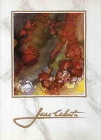 White Gallery (Bela galerija) Celje, 6 Junij, 1991