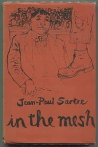 In the Mesh; A Scenario