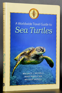 Sea Turtles: A Worldwide Travel Guide