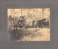 image of A NEW YORK COMPANY BEGINS TO STRIP BARE THE VIRGIN LOWLAND FOREST NEAR CHARLESTON DURING THE SOUTH CAROLINA LUMBERING BOOM  - 18 photographs detailing the operations of the A. C. Tuxbury Lumber Company