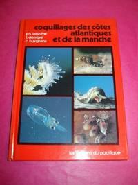 Coquillages Des Cotes Atlantiques Et De La Manche (Shells of the Atlantic Coast and De La Manche)