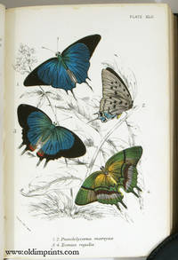 Lloyd's Natural History.  A Handbook to the Order Lepidoptera.  Part I.  Butterflies Volumes 1 and 2