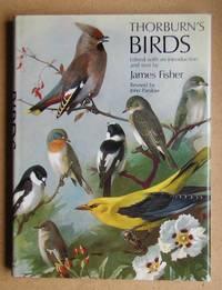 image of Thorburn's Birds.