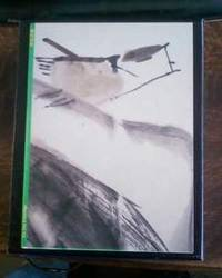image of Xie Jun Paintings