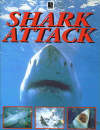 Shark Attack Silent Hunters of the Deep