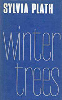 image of WINTER TREES.