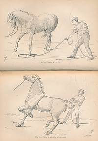 Illustrated Horse Breaking by  J H Oswals [illus.]  M Horace; Brown - First Edition - 1889 - from Barter Books Ltd and Biblio.com