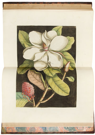 London: Printed for Charles Marsh, Thomas Wilcox and Benjamin Stichall, 1754. 2 volumes, folio. (20 ...