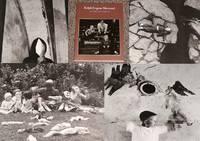 RALPH EUGENE MEATYARD: AN AMERICAN VISIONARY