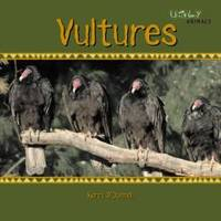 Vultures Ugly Animals