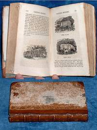 A SYSTEM OF NATURAL HISTORY, written by M. de Buffon, Carefully Abridged: and the Natural History of Insects .. Embellished with Elegant Engravings on Wood. In four volumes. Vol. I. [only]