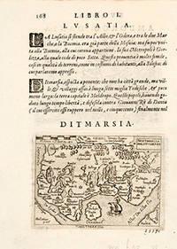 image of DITMARSIA. THIETMARSIA HOLSATICAEREG