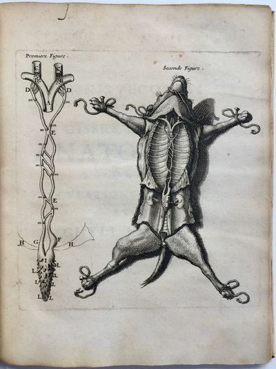 Experimenta nova anatomica, quibus...