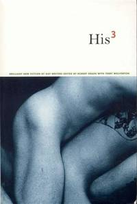image of His 3: Brilliant New Fiction by Gay Writers