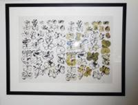 Butterflies (Offset Lithograph with Watercolor)