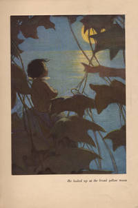 The Water Babies.; A Fairy Tale for a Land Baby