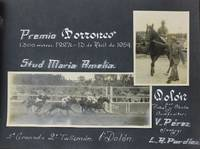 [Compilation of Nearly 180 Photographs of Horse Racing at the Hipodromo de Maroñas, Montevideo, During the 1940s and 1950s]