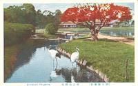 Japan – Korakuen Okayama unused Postcard