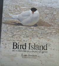 Bird Island : Pictures From a Shoal of Sand