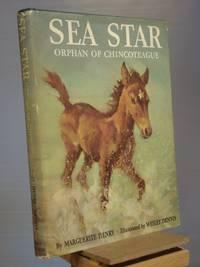 Seastar, Orphan of Chincoteague